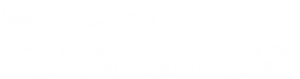 Reifen Danger in Hameln Logo